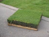 Les gazons synth tiques et pelouses artificielles chez pierre et sol four - Dalle gazon synthetique ...