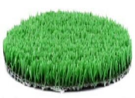 moquette pelouse latest moquette pelouse with moquette pelouse finest rouleau de gazon. Black Bedroom Furniture Sets. Home Design Ideas