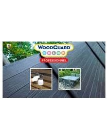 WOODGUARD COLOR professional - Guard industry