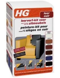 Paint kit for seats in leather - HG