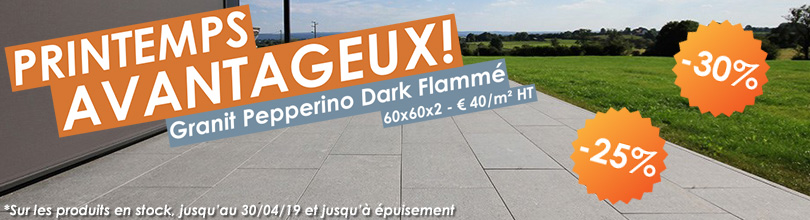 Printemps avantageux - Granit Pepperino Dark Flammé